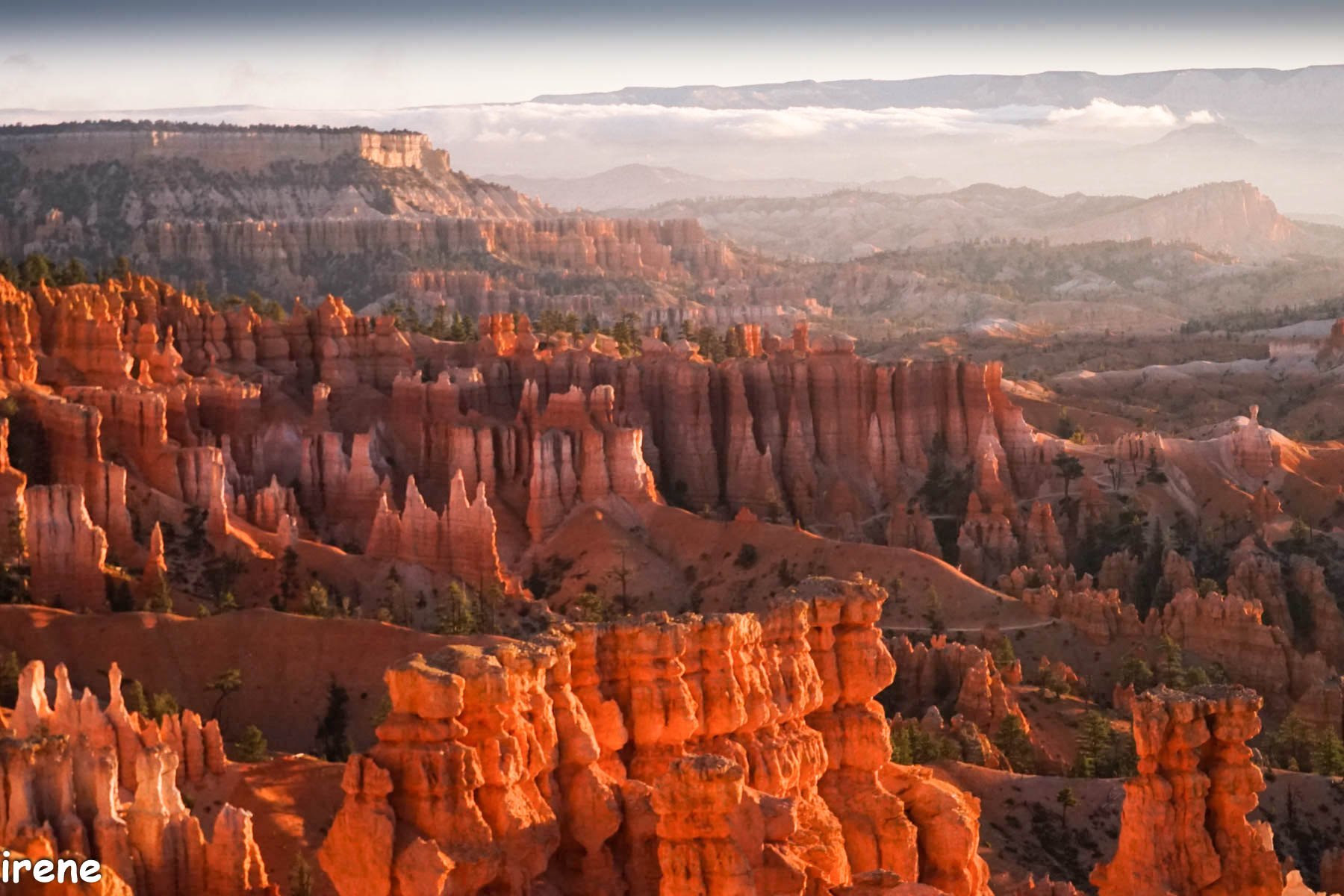 Early Morning Brice Canyon by Irene Berger Photographer